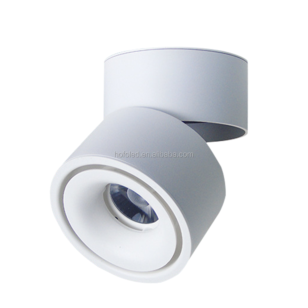 Standard Adjustable COB Recessed Led Downlight For Store