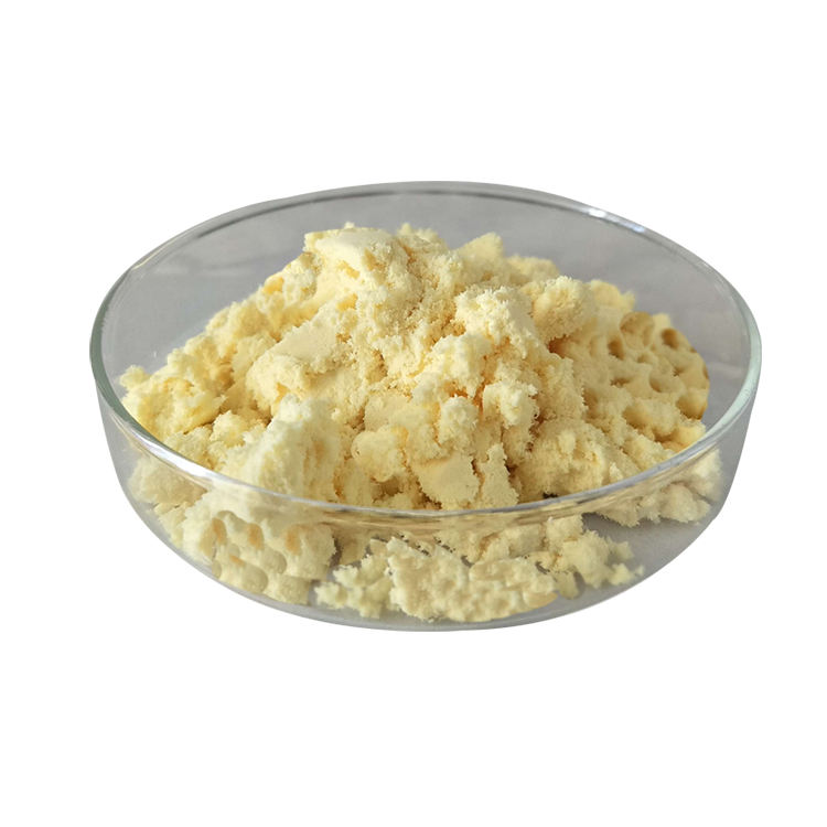 Factory Price Offer Ginger Root Extract Powder 1% Gingerol