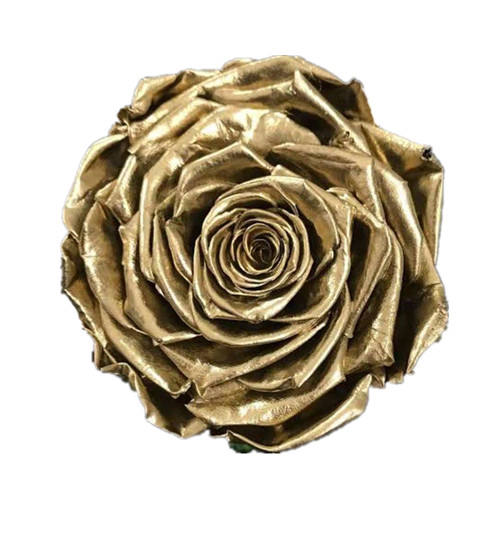 Huiya Golden Preserved Rose 5-6cm