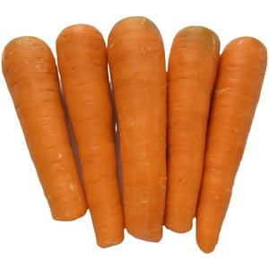 fresh carrots exporters in china with Good price