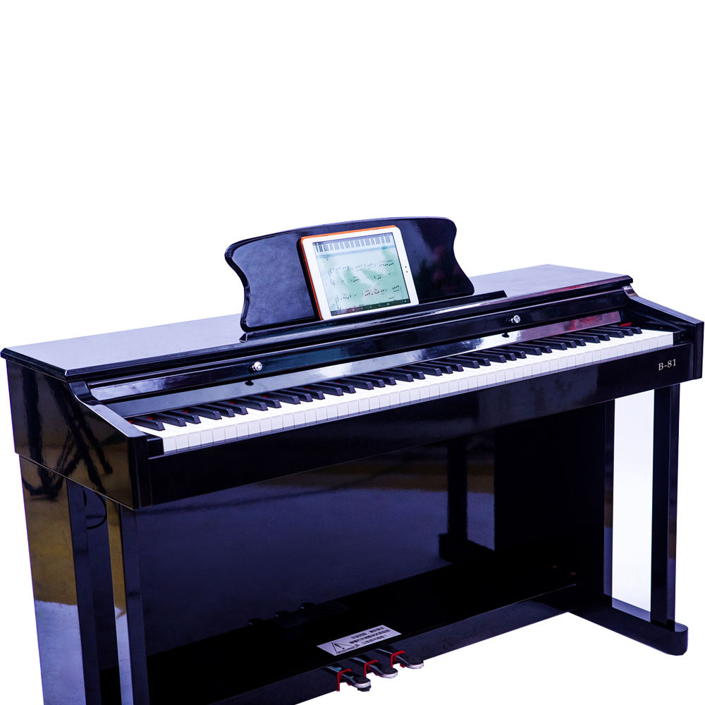 China professional MIDI action music 88 keyboards electronic digital piano