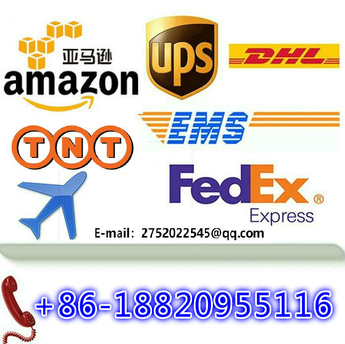 DHL shipping agent UPS express service freight forwarder china to Cambodia / Truck to Cambodia DDP