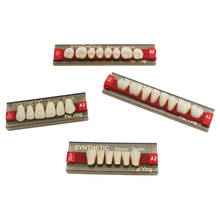 Factory FDA CE ISO Dental Acrylic Teeth Artificial False Teeth Synthetic Resin Teeth