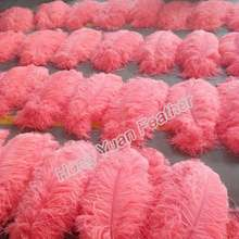 55-60cm Pink Ostrich Feather From South Africa Pink Feather Material Ostrich Fathers For Sale in Turkey