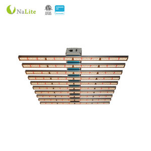 China Supplier Warm White Led Grow Lights 600 W 5000 W For Indoor Plants