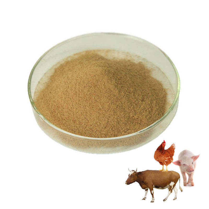 Animal feed additive probiotic powder
