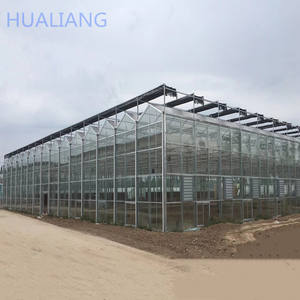 Low Price Of Commercial Agriculture Glass Greenhouse With Hydroponic system