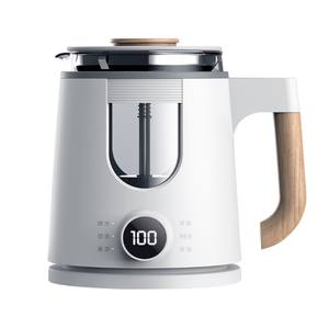 HOTSY mini electric kettle health guangzhou electric kettle with side display electric new kettle