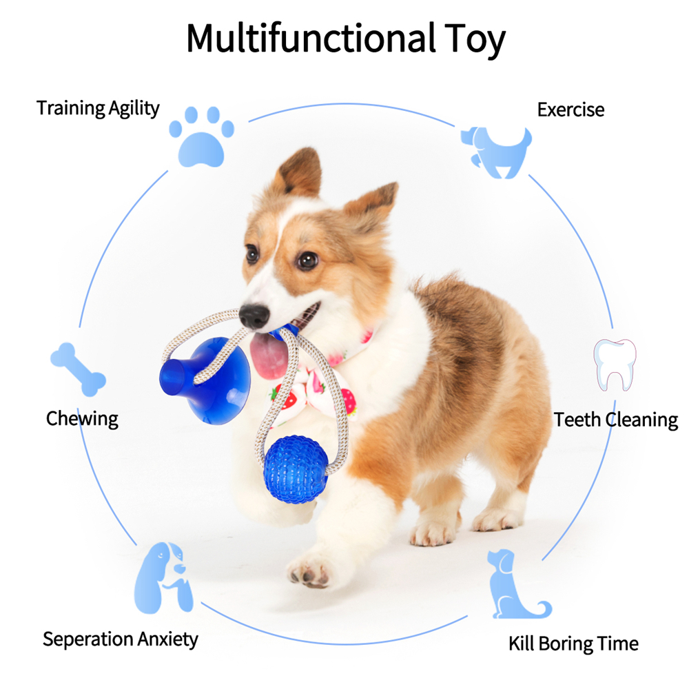 Animal durable teeth chew dog toy ball , rubber suction cup training interactive pet dog chew toy