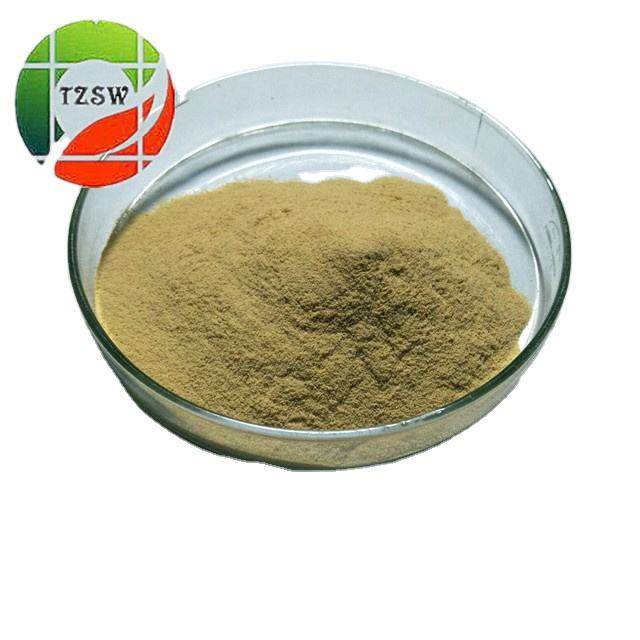 Camellia Seed Extract powder 60%- 98% tea saponin powder price