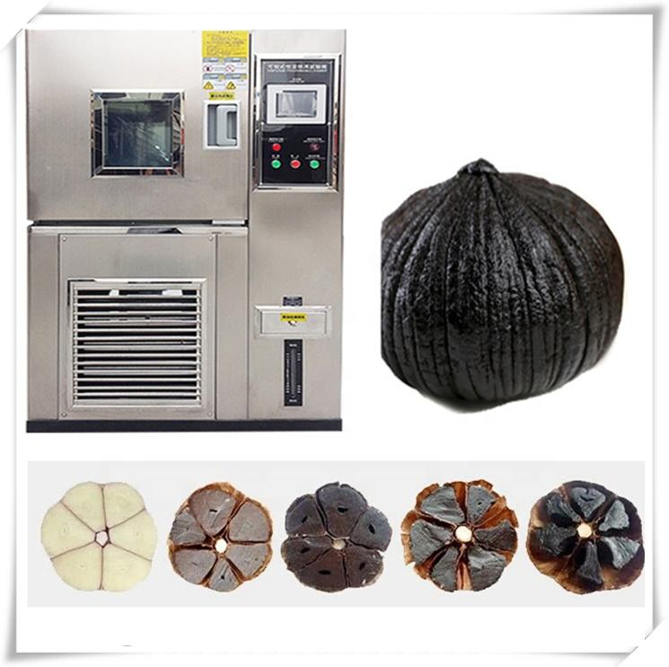 China top sale !!! High performance High productivity and low consumption black garlic fermentation machine on sale