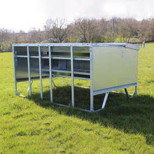 Custom classic outdoor pasture automatic calf animal feeders for sale