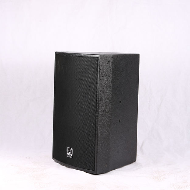 China Cd412s Outdoor Backpack Speaker Hi-Fi Ev Speakers 15
