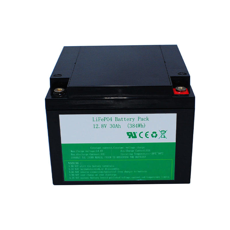 Deep Cycle 12V 12Ah 20Ah 24Ah Rechargeable Lifepo4 Lithium ion Batteries for Sale