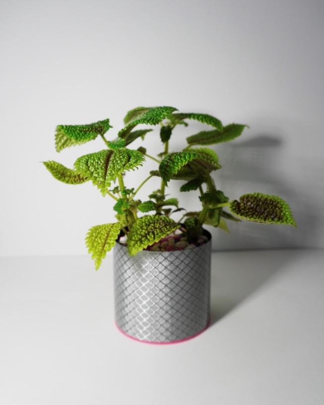 new fashion design fiber glass carbon fiber flower plant pots desk top decoration planter home garden