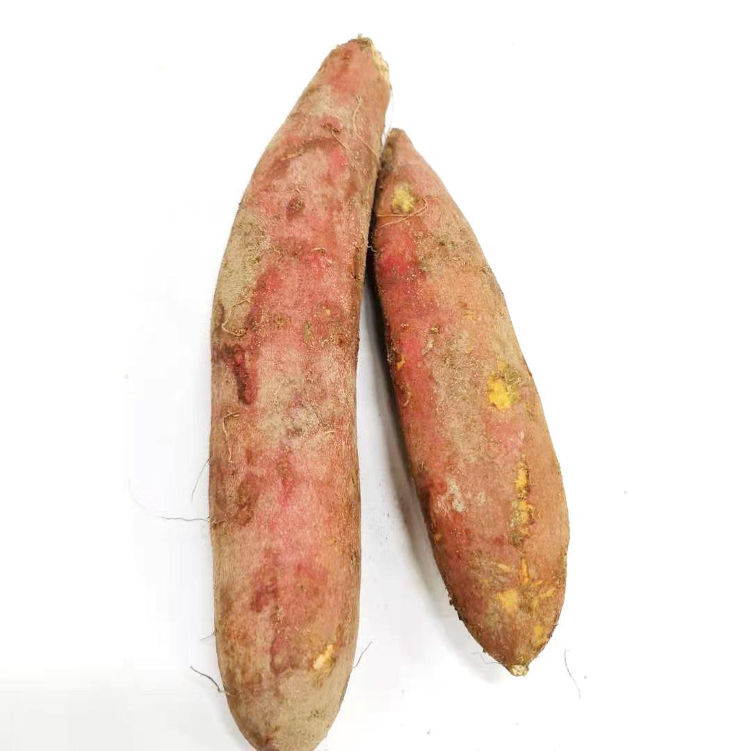 Factory Direct Bulk Fresh Quick Frozen Sweet Potato