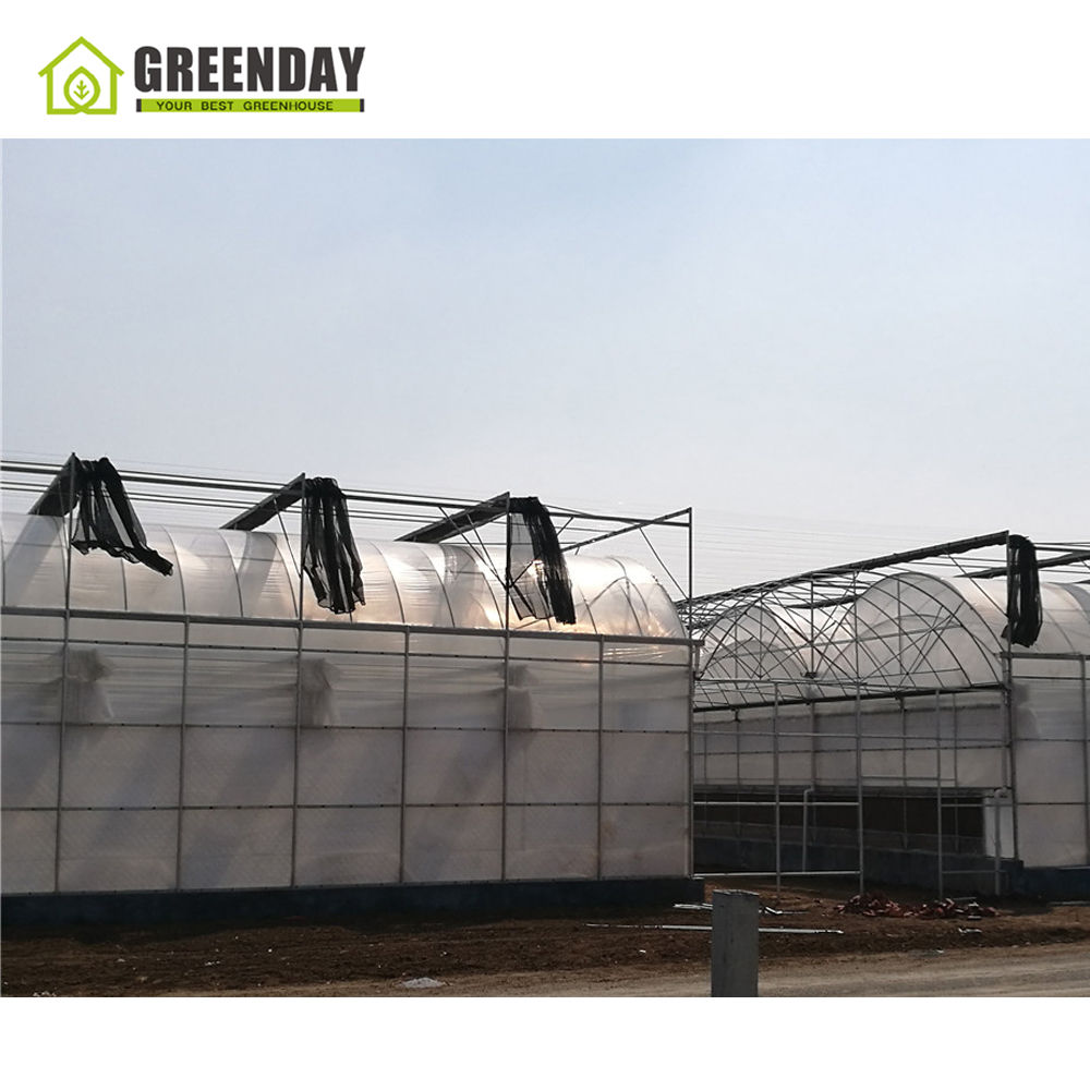 GREENDAY Cheap commercial grow vegetables polycarbonate sheet agriculture green house for plastic