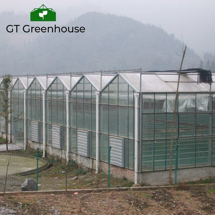 Hydrophonics growing system polycarbonate greenhouse plastic sheet panel