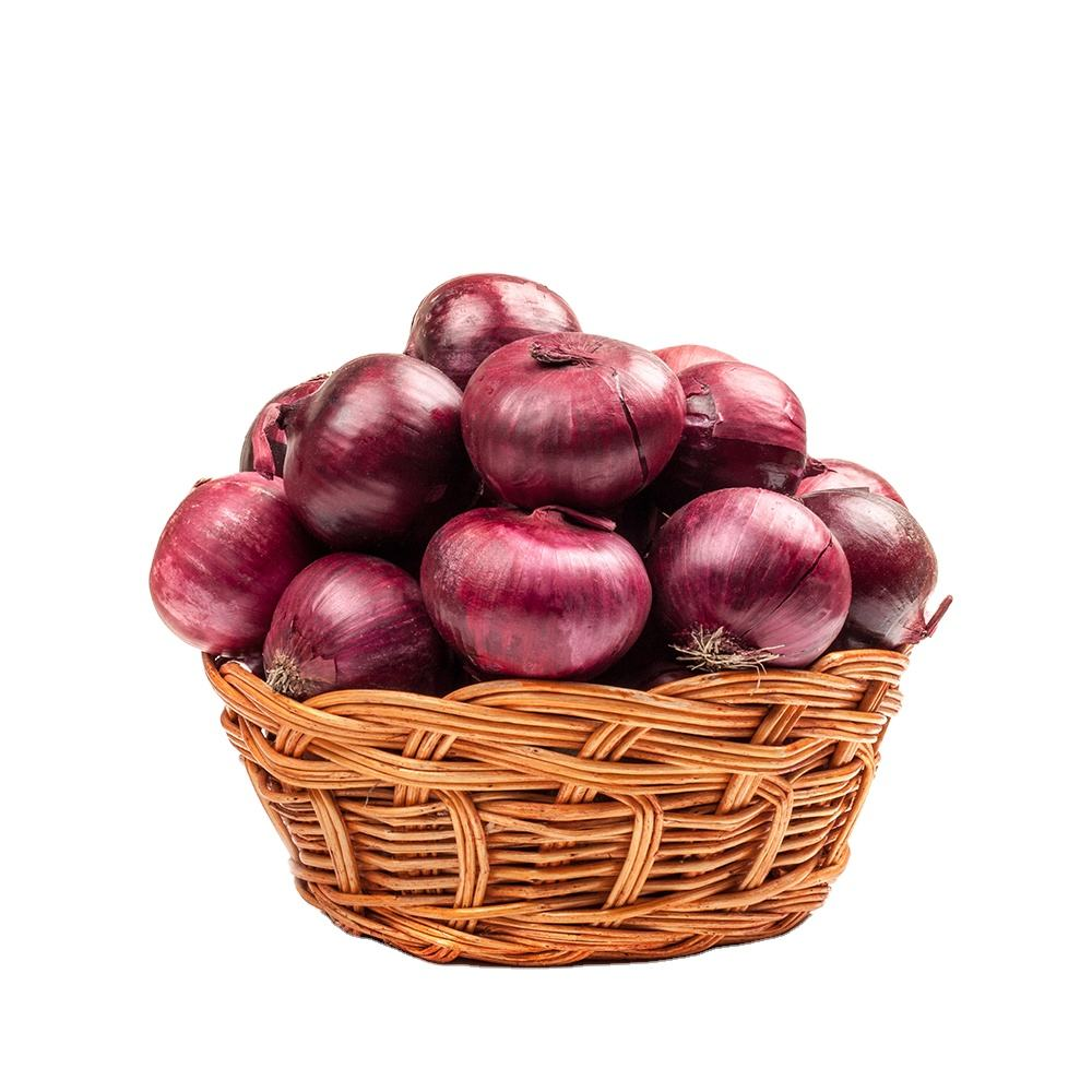 Premium quality Fresh Red Onion For Wholesale Prices