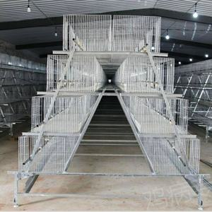 Good price automatic A type layer chicken cage for poultry farm