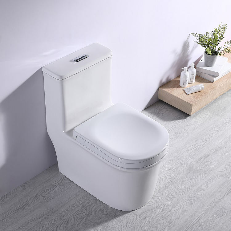 555 Modern Toilet Seat Family Vacum Flash For Canivan Manufacture Black Flush Plate Washroom Wc Prefab Unit Boat Bucket