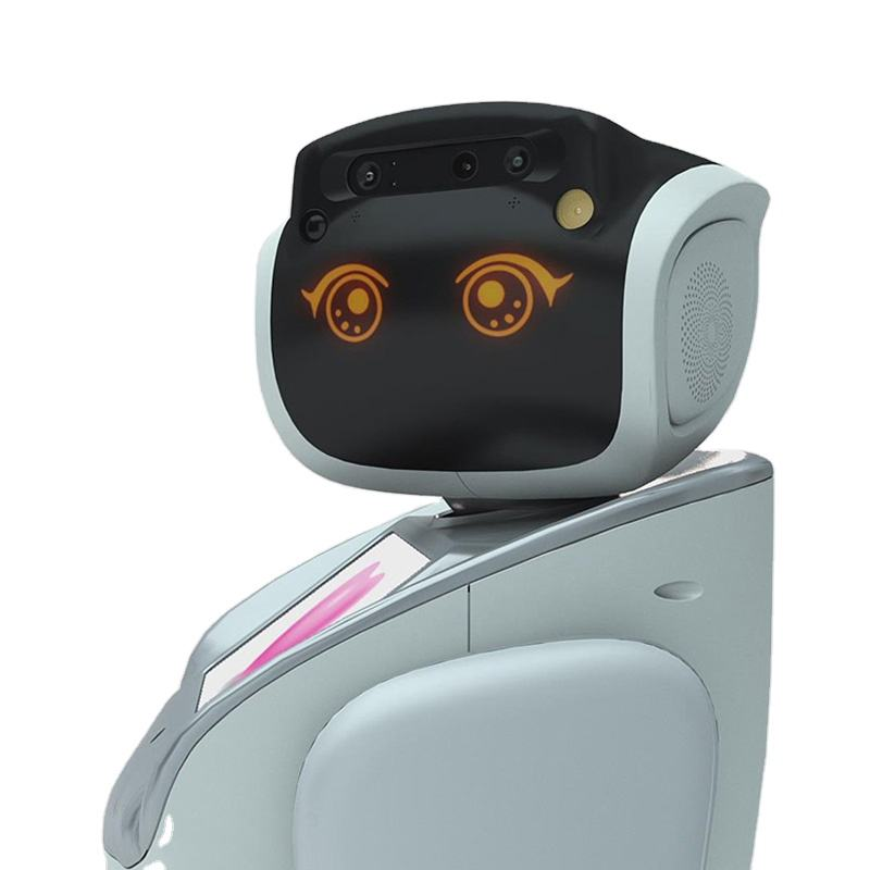 Education Robot Zhongyun High-quality Educational Resource/ Intelligent Commercial School Robot For Home Surveillance
