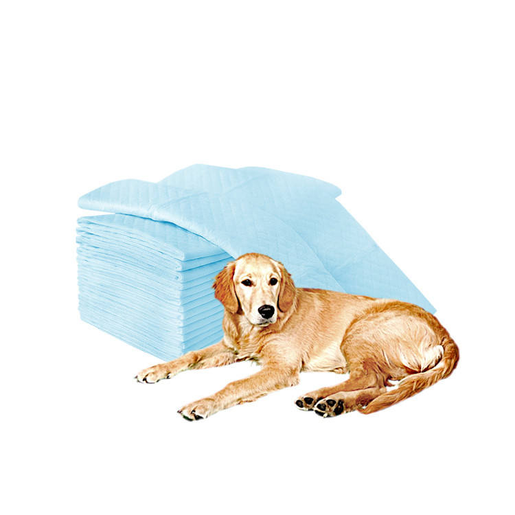 Biodegradable Cheap Doggie Potty Holder Rolls Free Samples Cat Dog Puppy Pad Training Pee Underpad