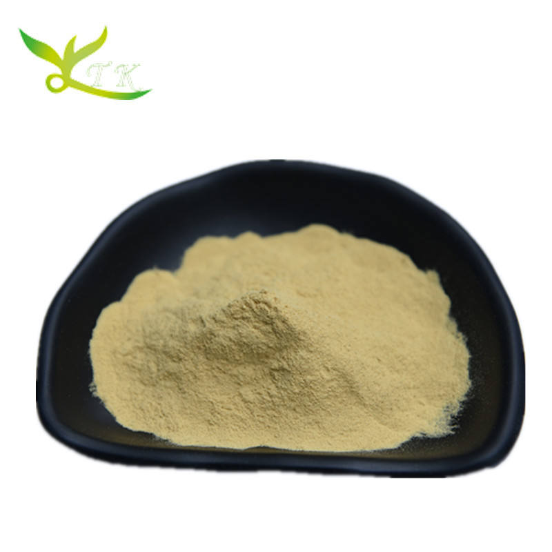 100% Natural Ginger Extract Powder Water soluble