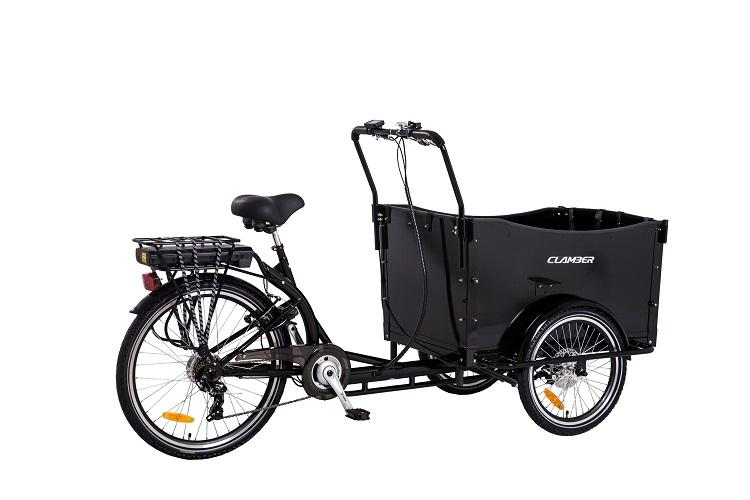 Trike 3 Wheels Electric Cargo Motor Tricycle Cargo Bicycle Electric Bike Electric Trike