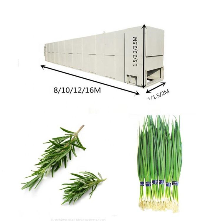 freeze drier rosemary basil chives parsley chives fruits mango banana apple belt dryer food dryer