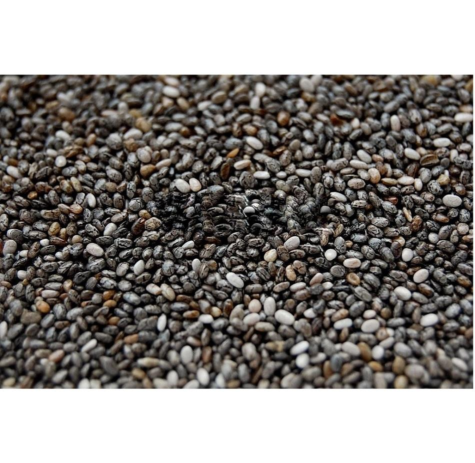 High Quality Irradiated Black Chia Seeds For Weight From Mexico
