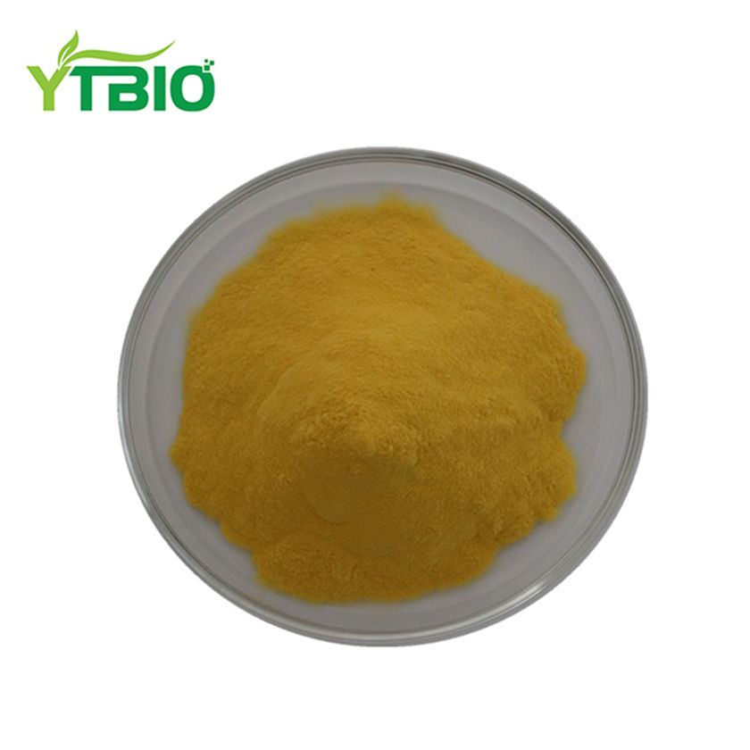 Coptis Chinensis Chiết Xuất, Berberine Hydrochloride 98% Hplc