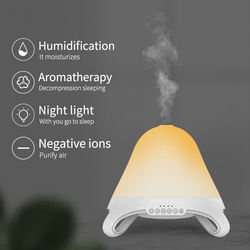 Healthy Enrich Your Life Ultrasonic Negative Ionizer Anion Humidifier Aromatherapy with Mist LED Light