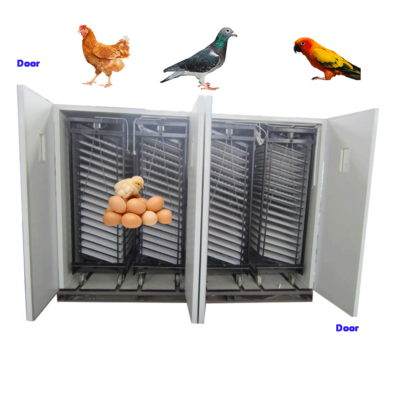Runxiang Automatic Chicken Quail Bird Pigeon Duck Goose 16000 Egg Incubator Farm Equipment