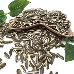 Chinese Wholesale Organic Natural Big Size Sweet Black Raw Collagen Sunflower Seeds 363