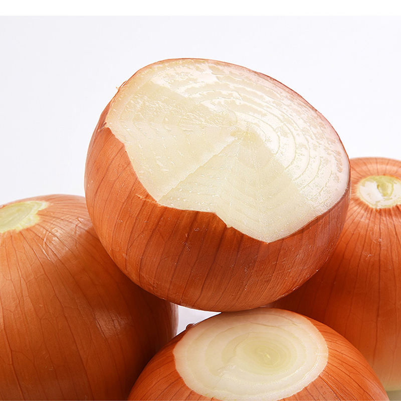 fresh yellow onion price by onions exporter