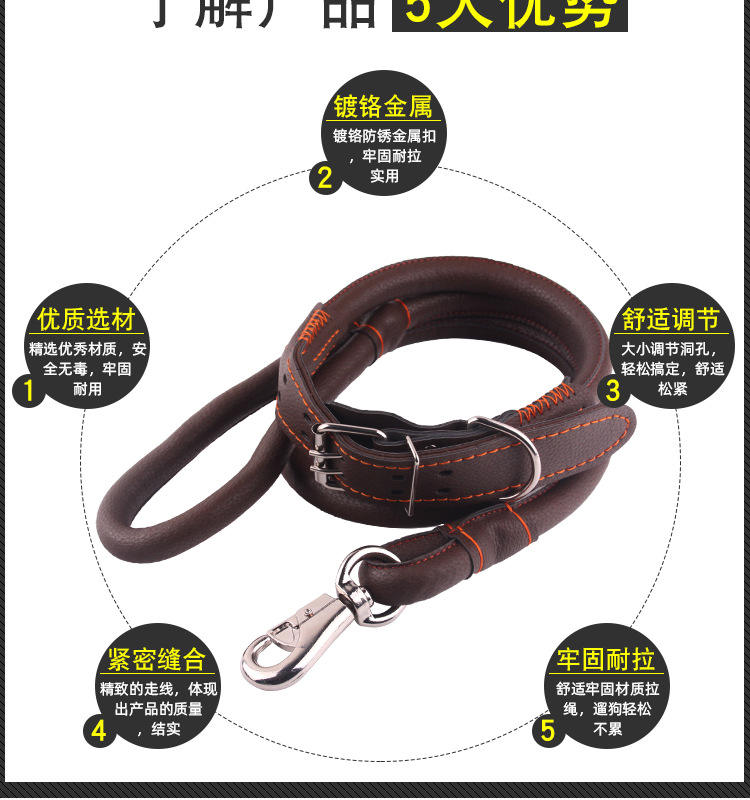 Custom Wholesale Personalized harnesses Logo Design Luxury Solid leather Pet Cat Dog Collar And Leash Set