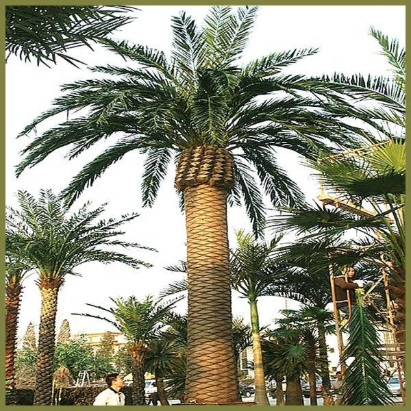 paradise palm tree,outside decor plastic plant artificial date palm tree without pot