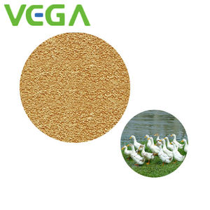 VEGA High quality factory direct supply 99% lysine feed grade