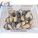 High quality boiled half shell mussel with competitive price