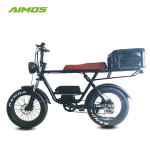 AIMOS 20 inch aluminum alloy 73 frame 2 seats 48V 1000w super electric fat bike