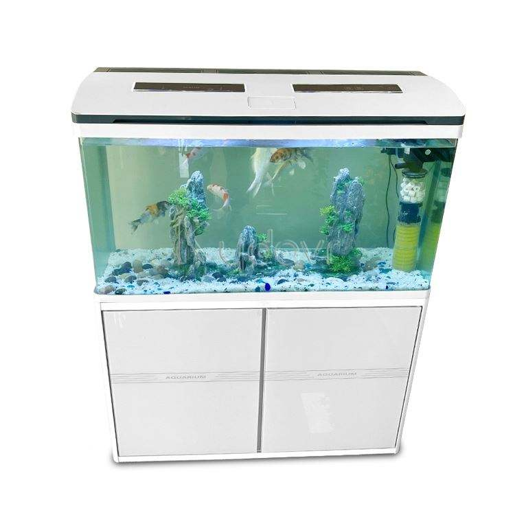 2021 Camping Big Aquarium Tank Fish With Low Price