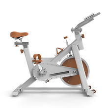 SD-S79 Drop shipping premium quality indoor fitness spin exercise spin bike
