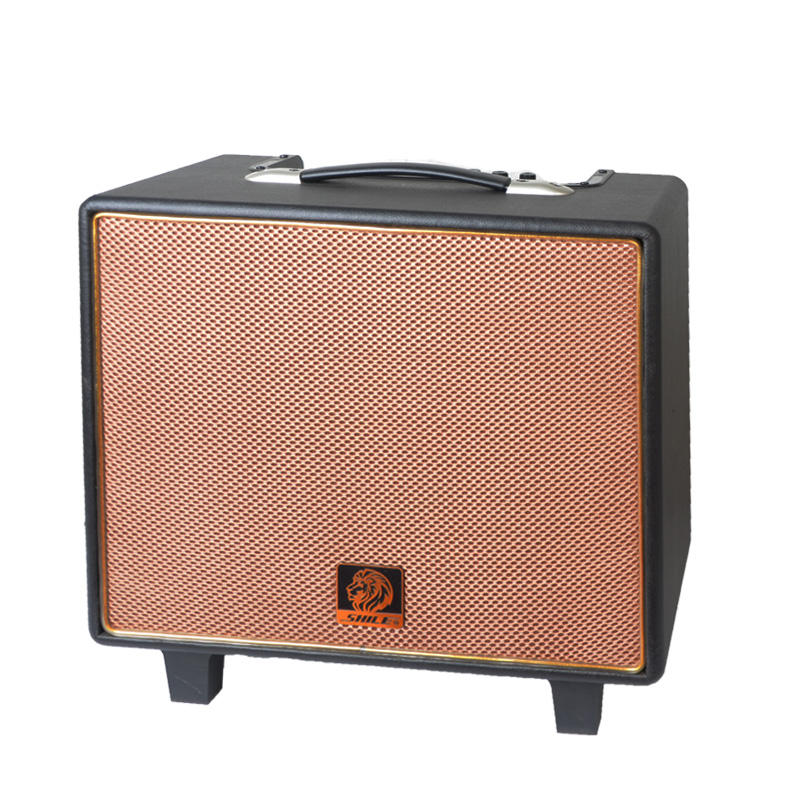 10inch 50W China hot sell guitar tube amplifier digital guitar active speaker