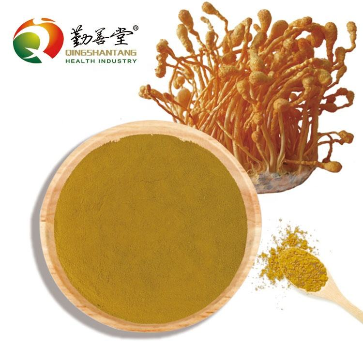 Cordyceps Extract Poeder 10:1/USDA Organic/Hot Water Extractie/30% Beta-D-Glucan Supplement