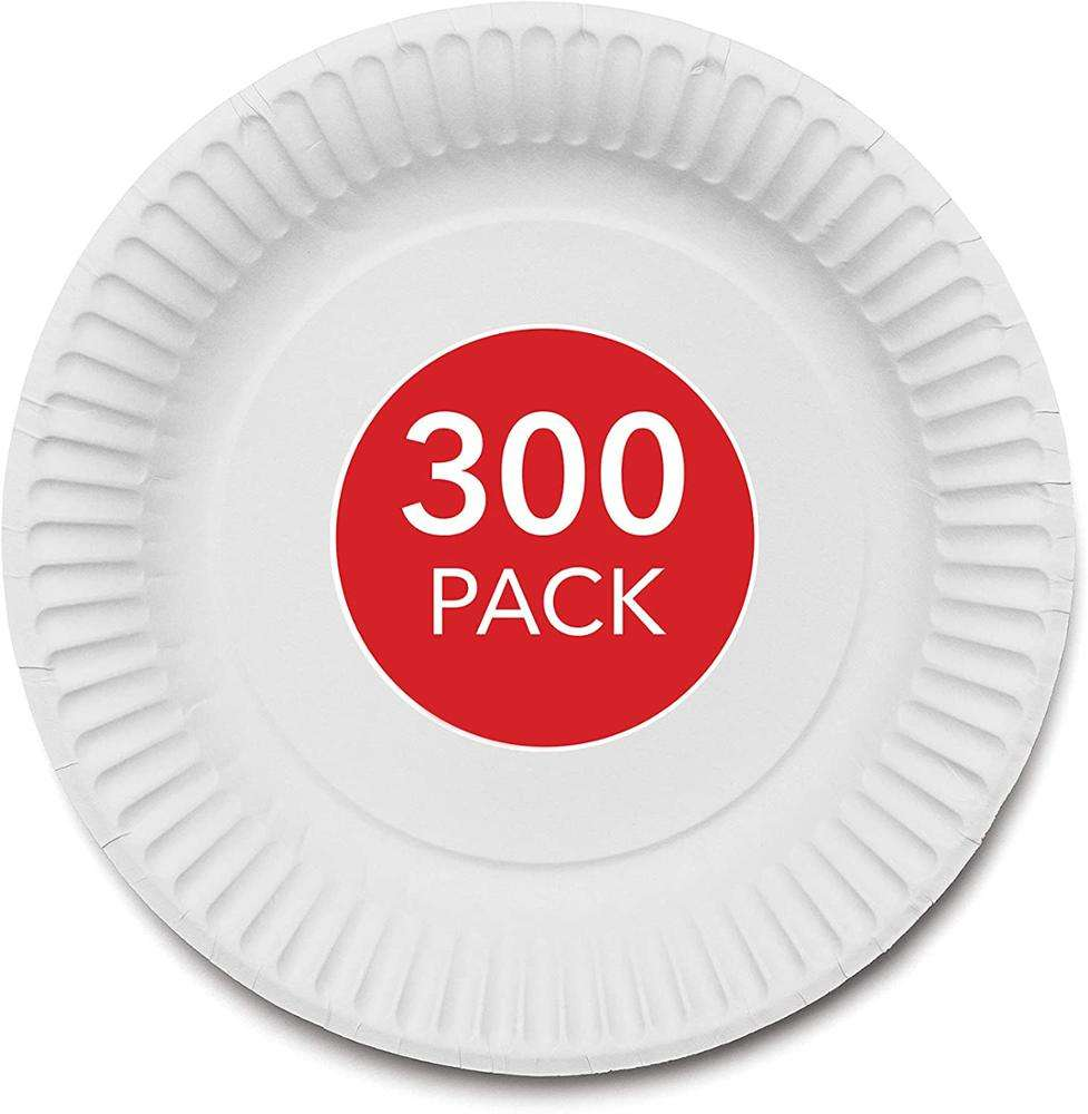 "9-Inch Paper Plates Uncoated, Everyday Disposable Plates 9"" Paper Plate Bulk, White, 300 Count"