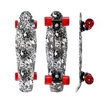 New Graphic Plastic Complete Fish Cruiser Skateboard For Christmas Gifts