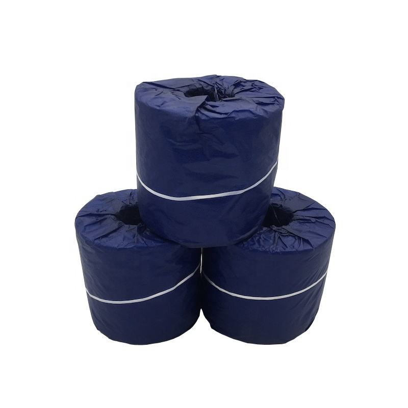 toliet roll wrapped in blue copy paper/ soft toilet tissue