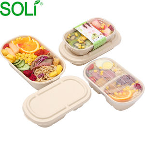 100% Biodegradable Sugarcane Pulp Food Packaging Lunch Box