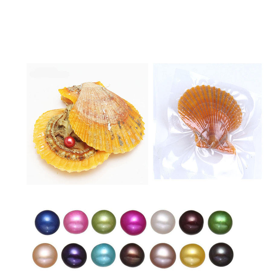 Wholesale DIY 27 colors akoya 7-8mm single pearls oysters Red shell Jewelry Decorations Vacuum Packaging Trend Gift Surprise